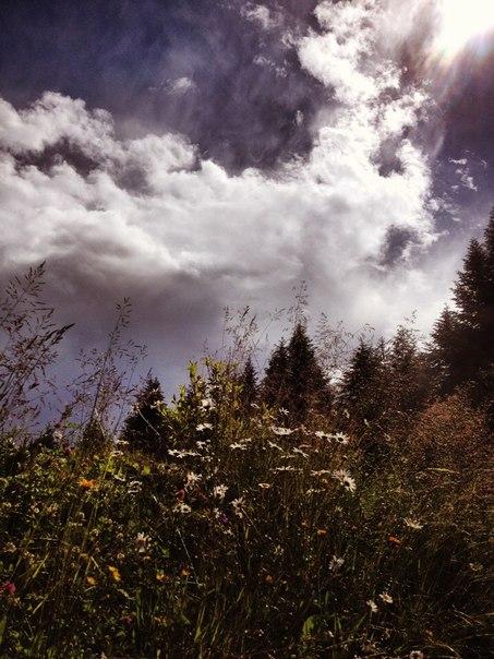 """Небо над садибою """"Дримба"""" в Східниці"""