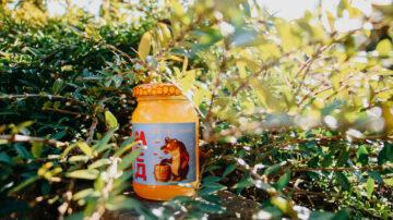 Смачний та корисний мед з Карпат